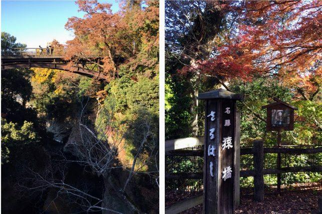 saruhashi3